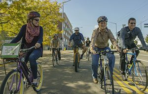 Group of bicyclists